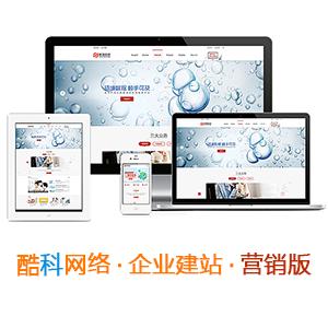 企業網站建設-營銷版